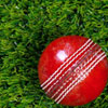 Artificial Grass Cricket
